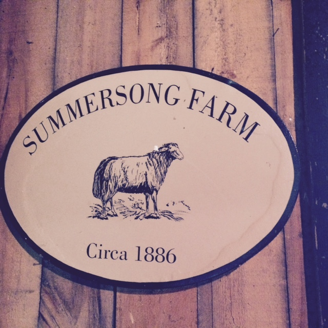 visit-to-summersong-farm-just-murrayed-1