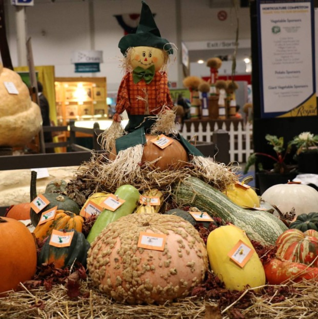 royal-agricultural-winter-fair