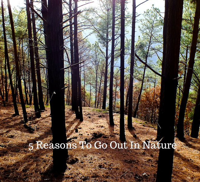 5-reasons-to-go-out-in-nature-just-murrayed