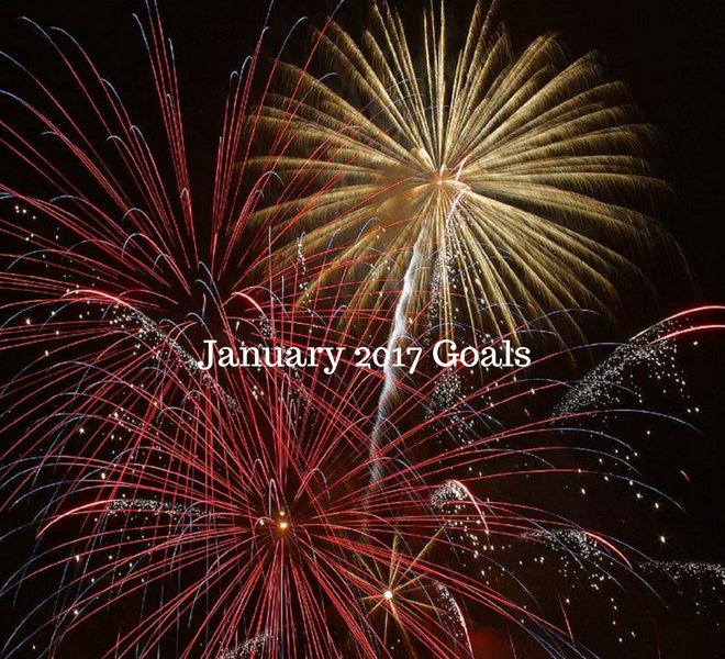 january-2017-goals-just-murrayed